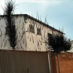 Building Snatchers Manel Bayo