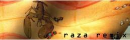 Raza Remix Manel Bayo