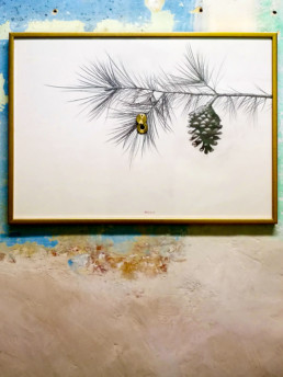 Contra Naturam | Manel Bayo | Exposició